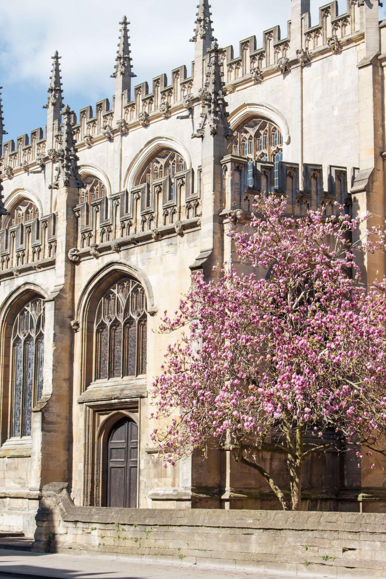 University Of Oxford: Famous British Universities