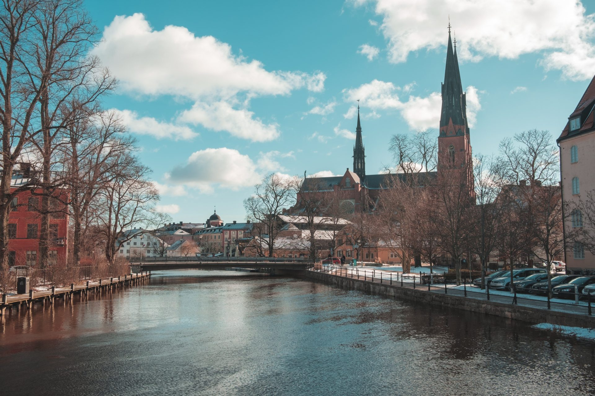 Skype intervju Švedska Sweden interview